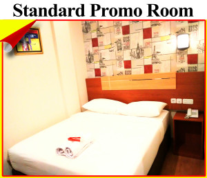 standard promo room